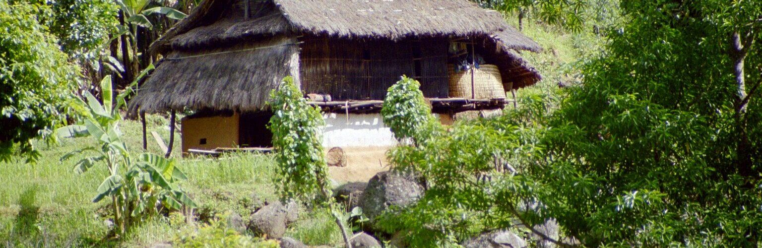 Shamanisme i Nepal